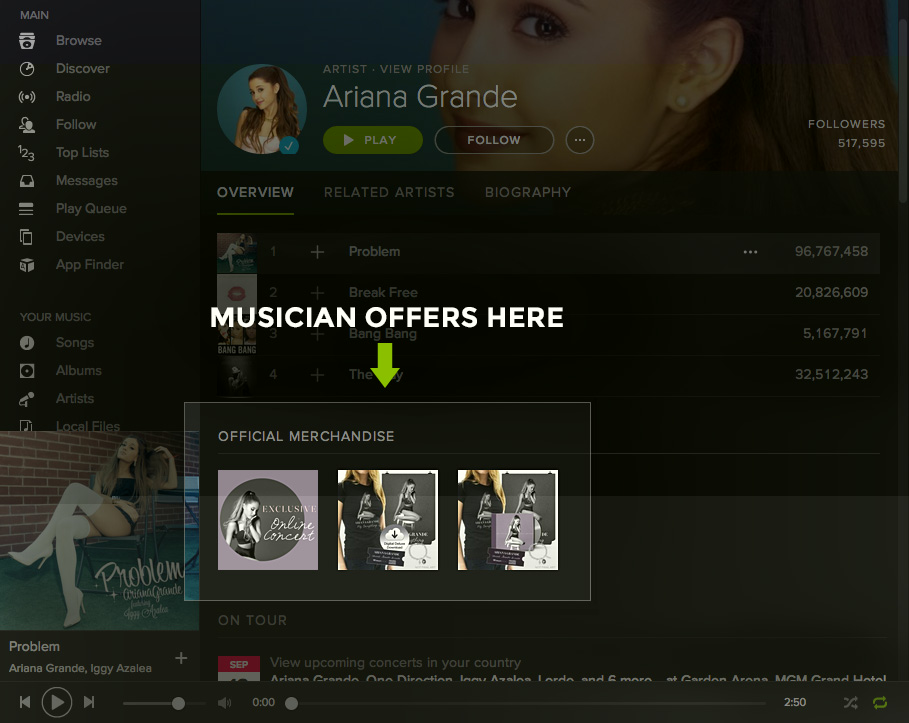 spotify_musician_offers_ariana (1)