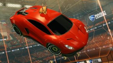 Topper-Bunny